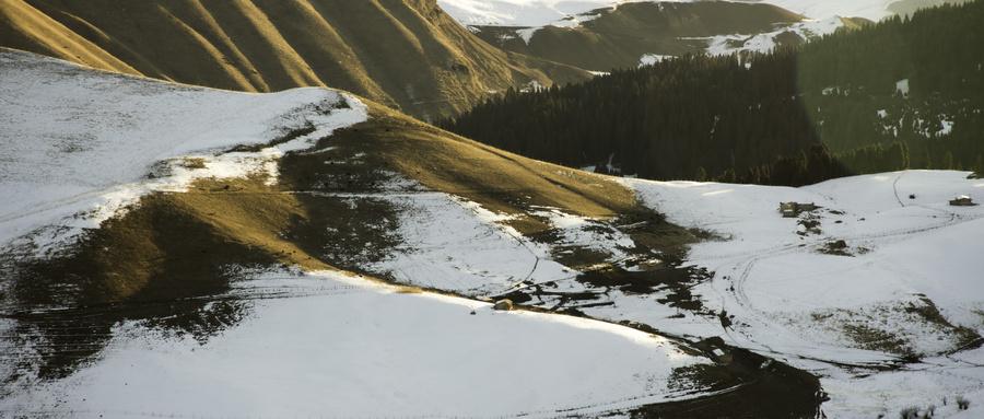 冬季摄影游